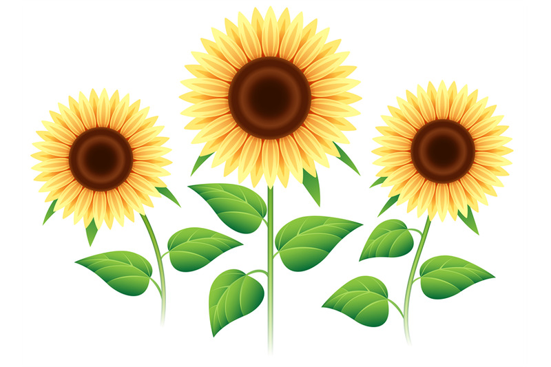 sunflower-cartoon-icons-set