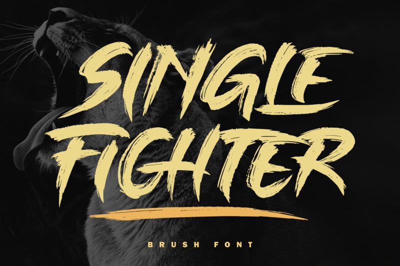 single-fighter