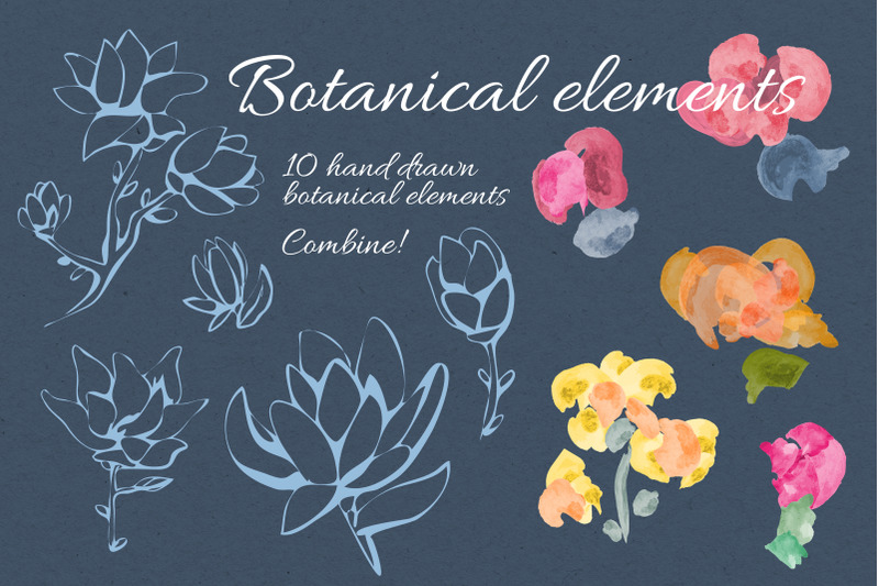 magnolia-flowers-elements-set-posters-patterns-floral-graphic