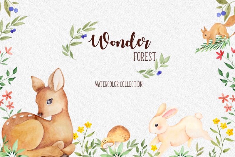 wonder-forest-watercolor-collection