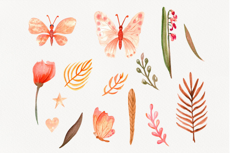 butterflies-and-flowers