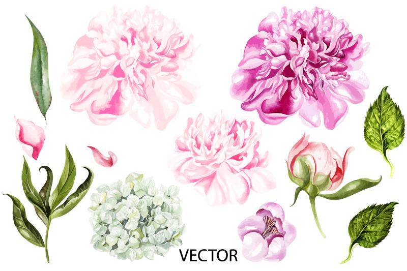 watercolor-blooming-peony-amp-hudrangea