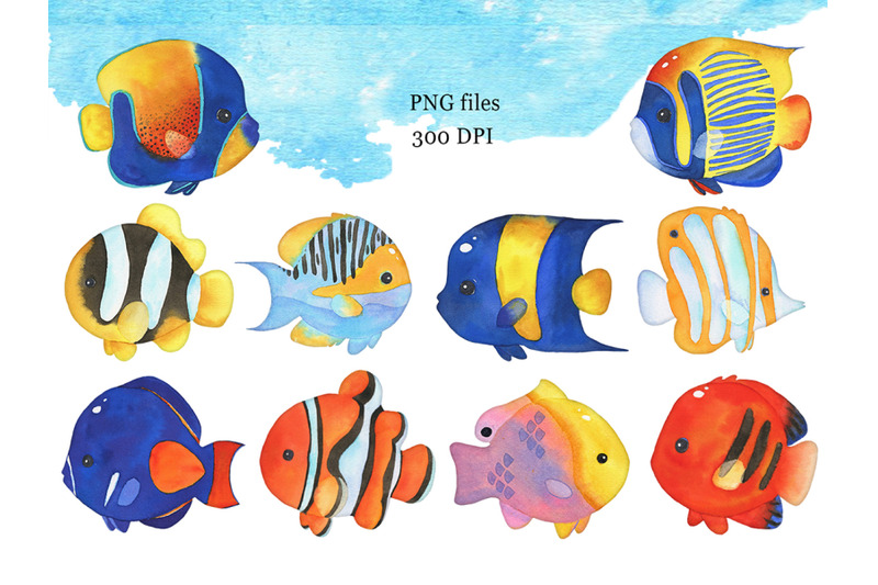 watercolor-tropical-fish-clipart