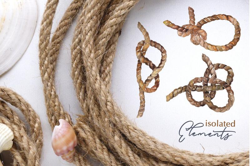 sea-knots-watercolor-png
