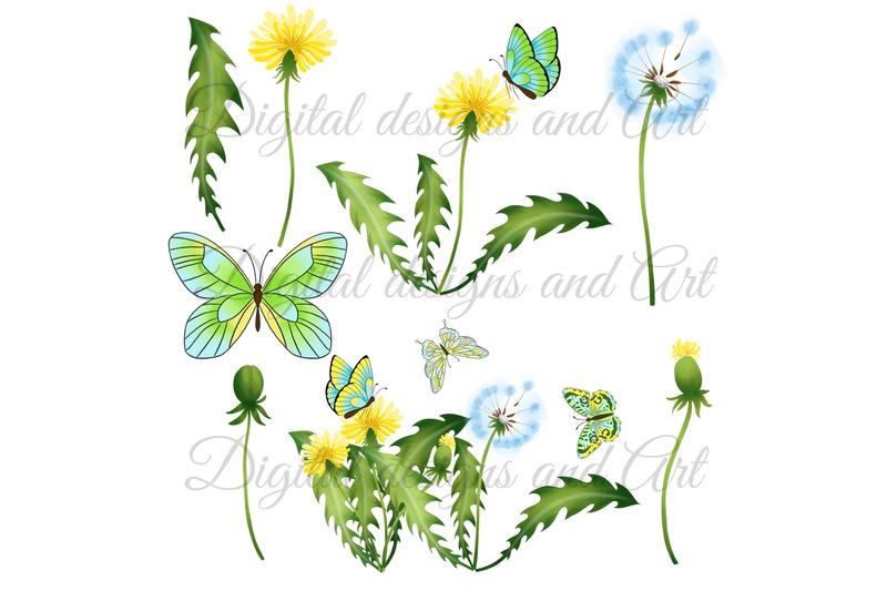 summer-dandelions