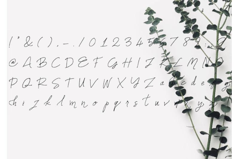 names-font