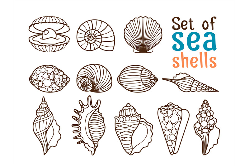 vector-sea-shell-line-icons
