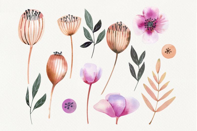 watercolor-cute-poppy-pods