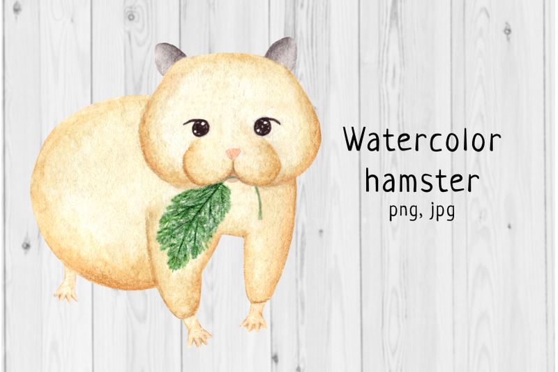 watercolor-hamster-3