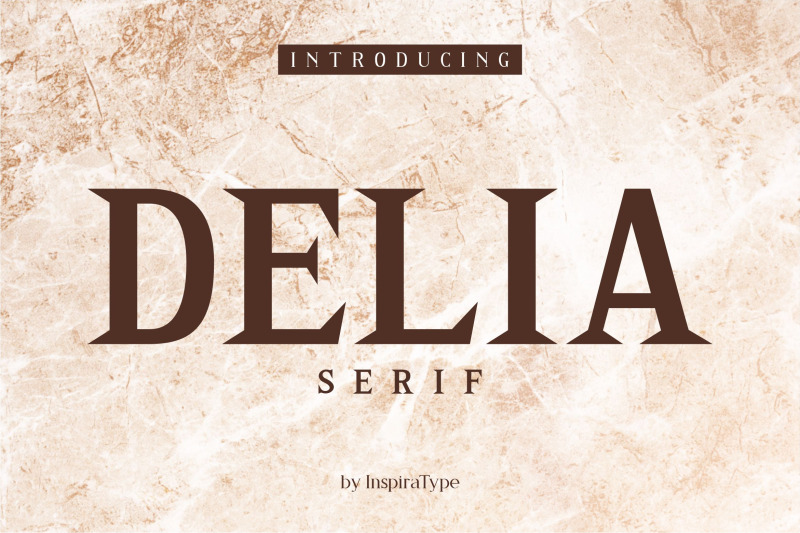 Download Delia - Regular and Bold Serif Font Family From