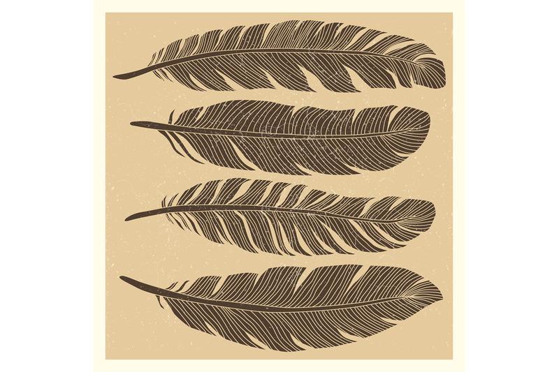 set-of-grunge-vintage-bird-feathers-design