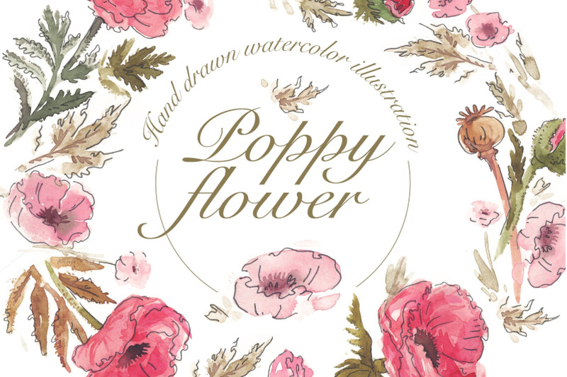 watercolor-poppy-flower-illustration