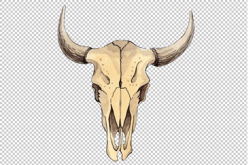 cow-skull-watercolor-png