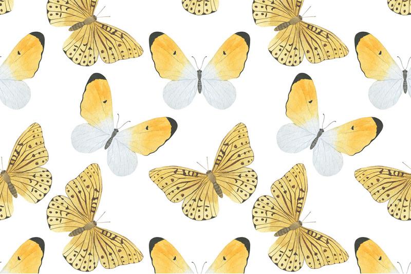 butterfly-watercolor