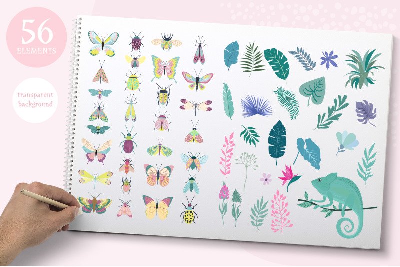 nature-insect-amp-plants-kit
