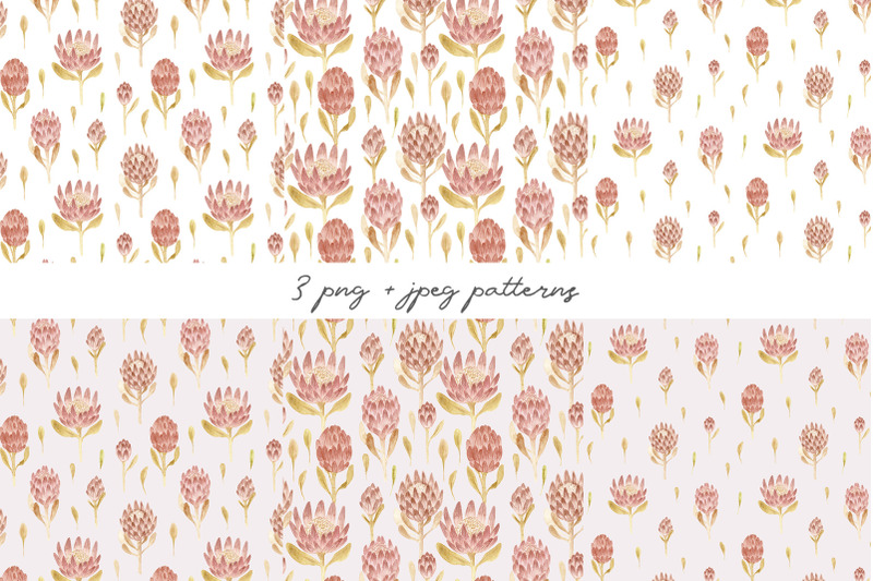 watercolor-protea-flowers-seamless-patterns-and-cliparts