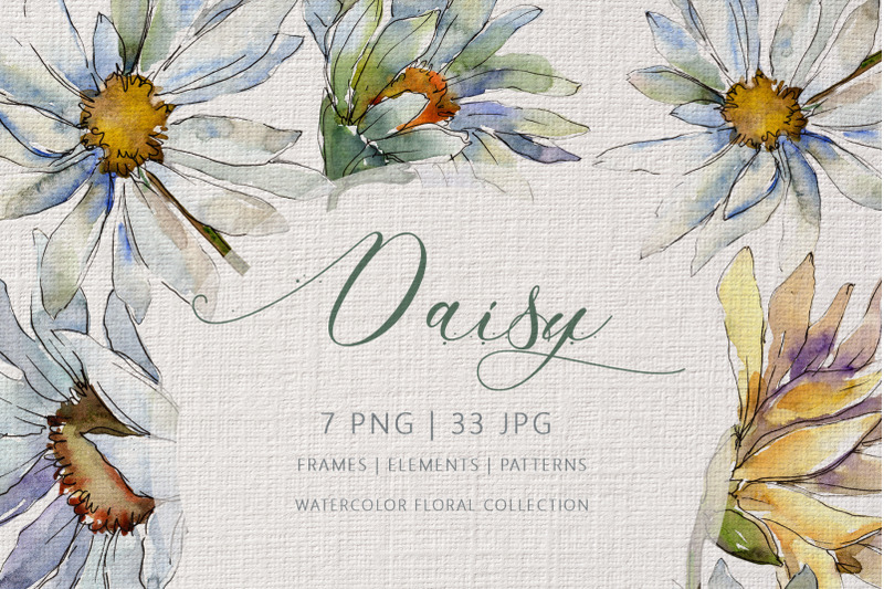daisy-watercolor-clipart-digital-flowers-clipart-manual-painting