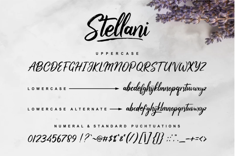 stellani-a-casual-handwritting-font