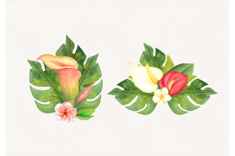 watercolor-clipart-tropical-flowers