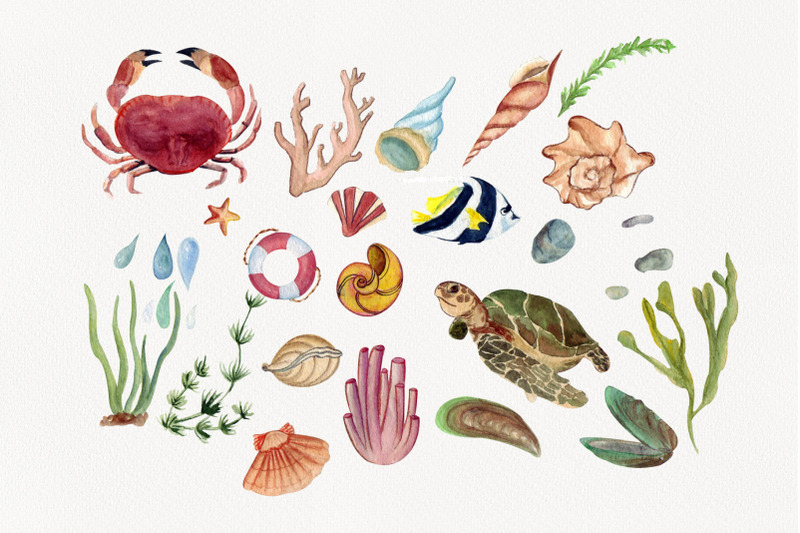 life-in-the-ocean-watercolor-clipart