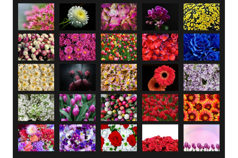 200-high-quality-flowers-digital-photoshop-overlays
