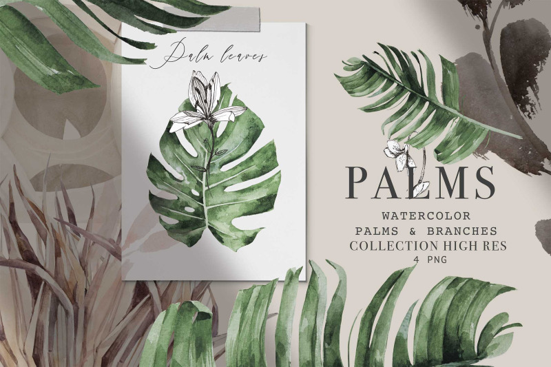 palm-amp-branches-vol-1