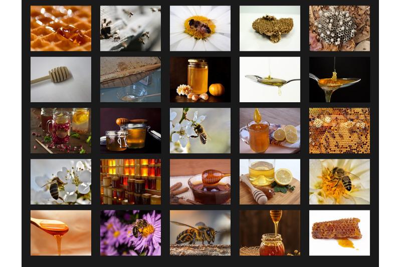 200-high-quality-honey-amp-bees-digital-photoshop-overlays