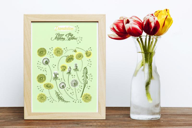 dandelions-digital-clipart