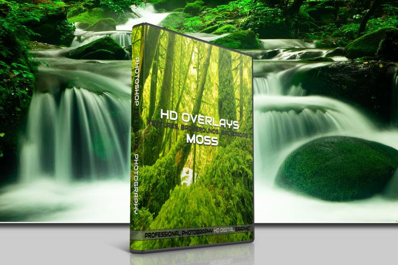 200-high-quality-moss-tree-stone-digital-photoshop-overlays