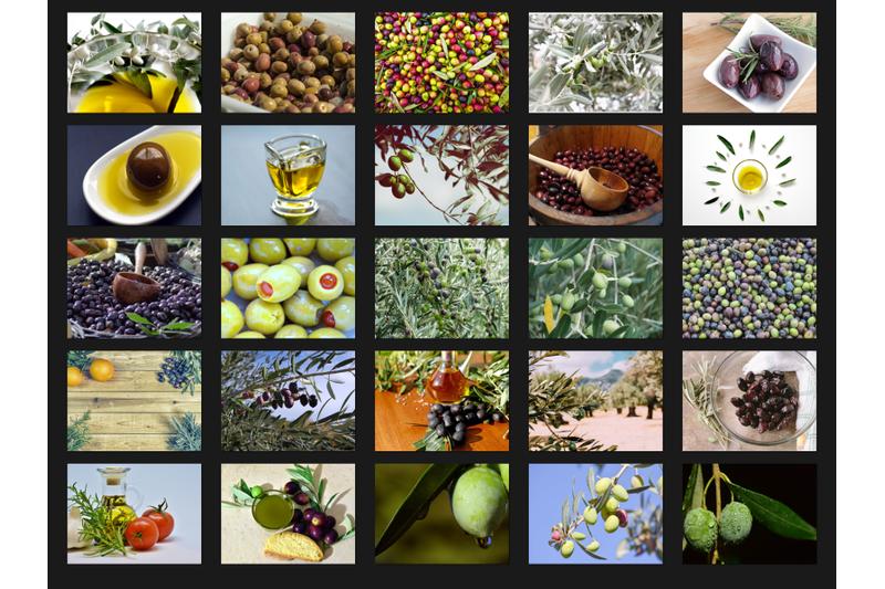 200-high-quality-olive-olive-oil-digital-photoshop-overlays