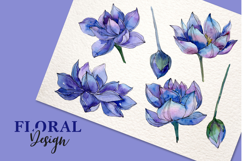 watercolor-lotus-png-set