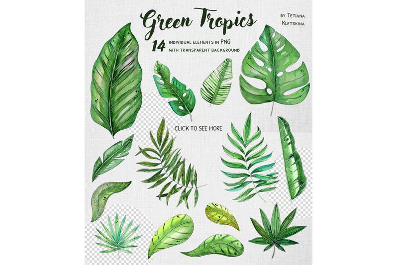 green-tropics