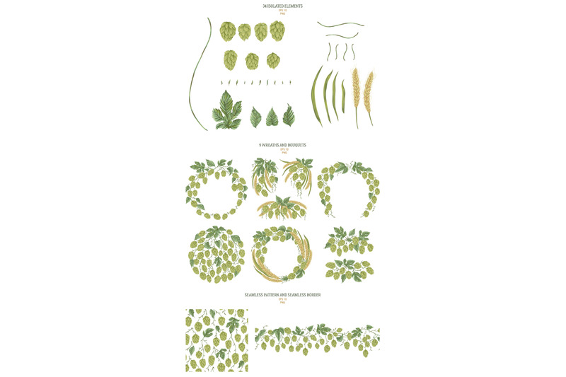 hop-branches-vector-collection