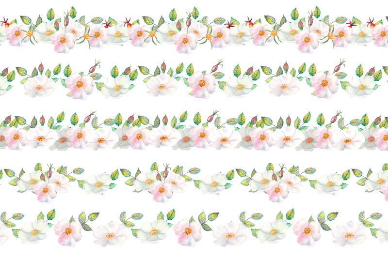 the-flowers-and-leaves-of-wild-rose-repetition-of-horizontal-border