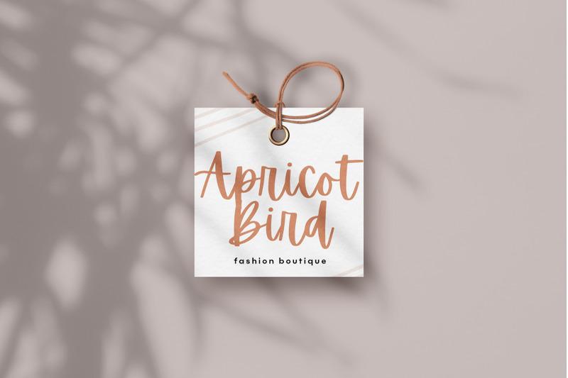 apricots-a-handwritten-script-font