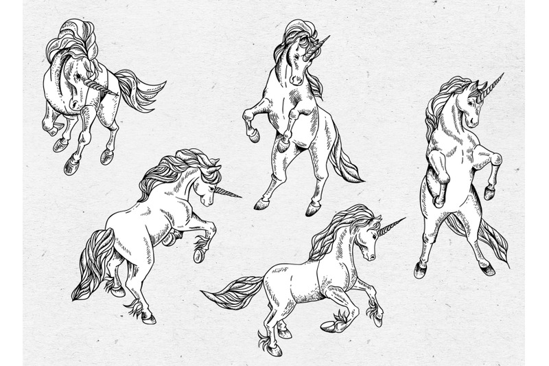 hand-drawn-unicorn-horse-pegasus