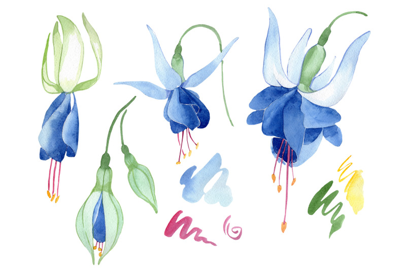 fuchsia-blue-watercolor-png