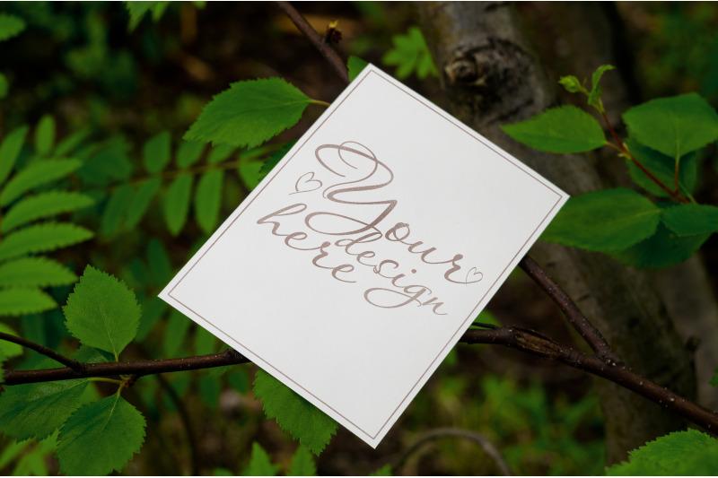 Free Card mockup on tree background (PSD Mockups)