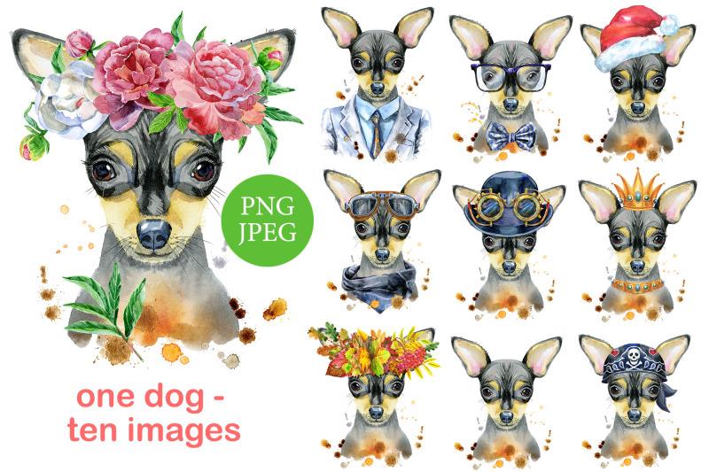 watercolor-portrait-of-toy-terrier