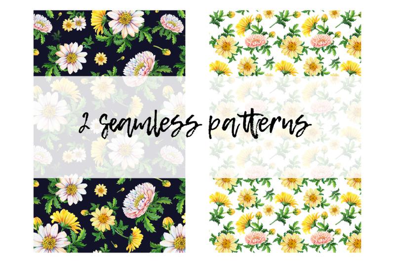 watercolor-chrysanthemums