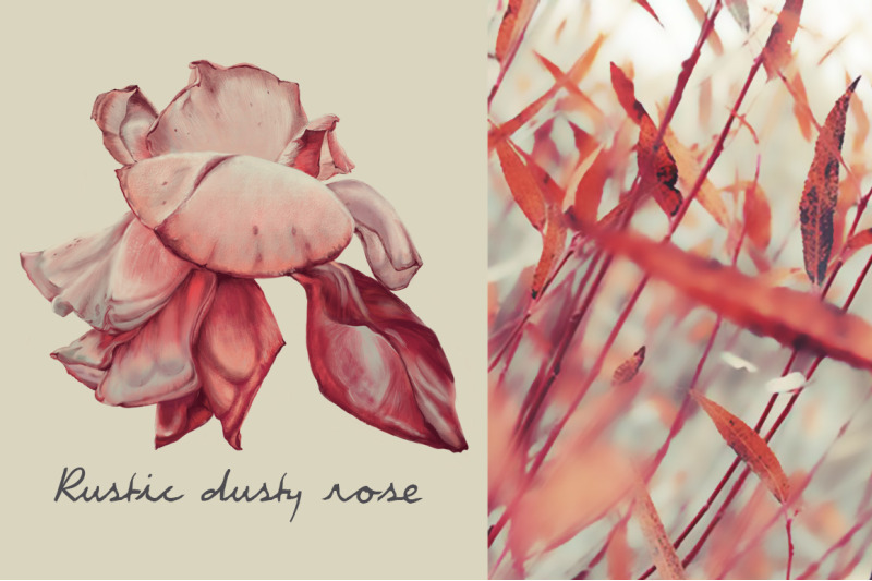 rustic-dusty-rose