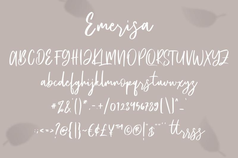 emerisa-modern-brush-script