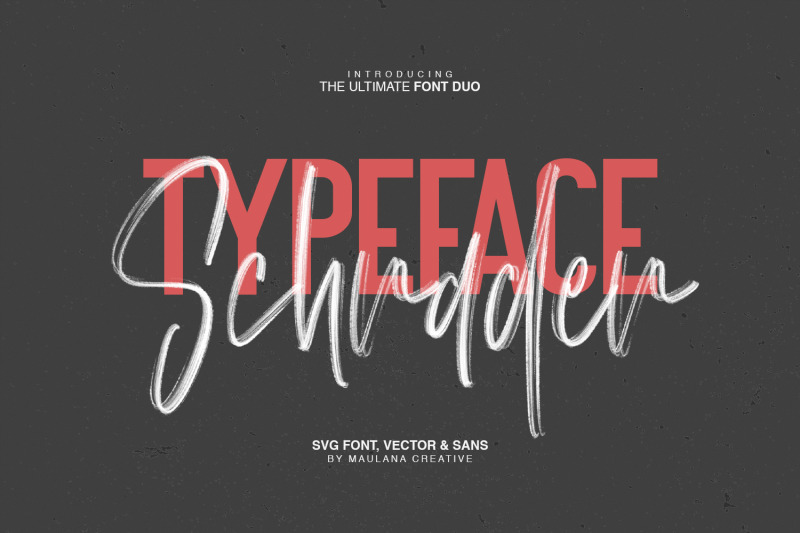 schrader-svg-brush-font-free-sans