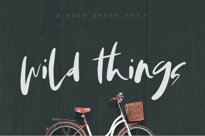 wild-things-brush-font