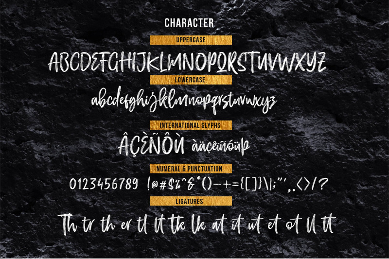 efrisilla-handbrush-script