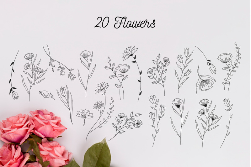 110-hand-drawn-botanical-elements