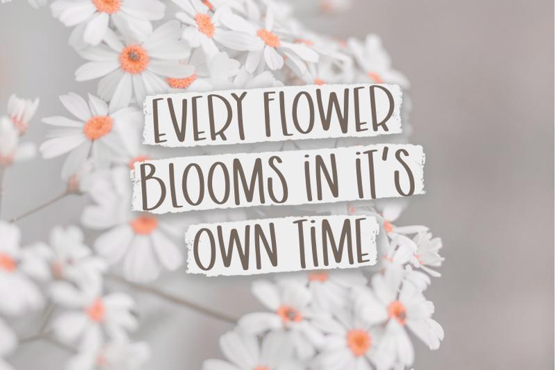 backyard-bouquet-a-capital-font