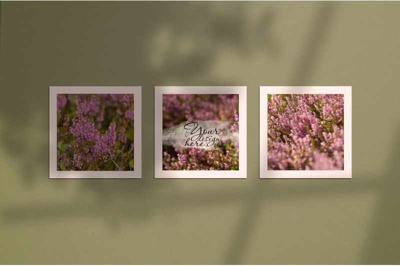 Free Mockup of three posters on a olive wall with window and tree shadow (PSD Mockups)