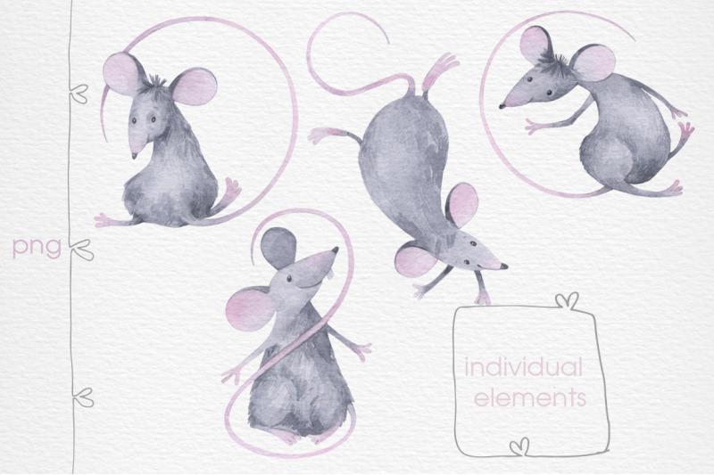 funny-rats