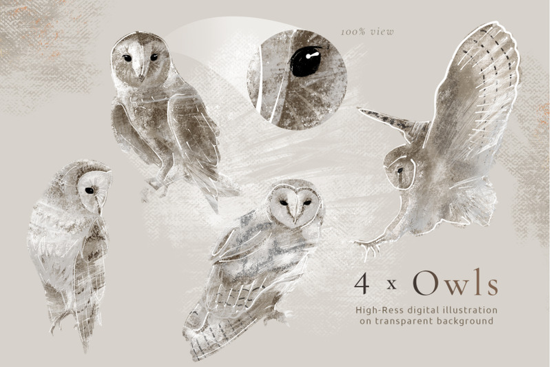 hand-drawn-graphics-owls-amp-roses-for-wedding-stationery-design